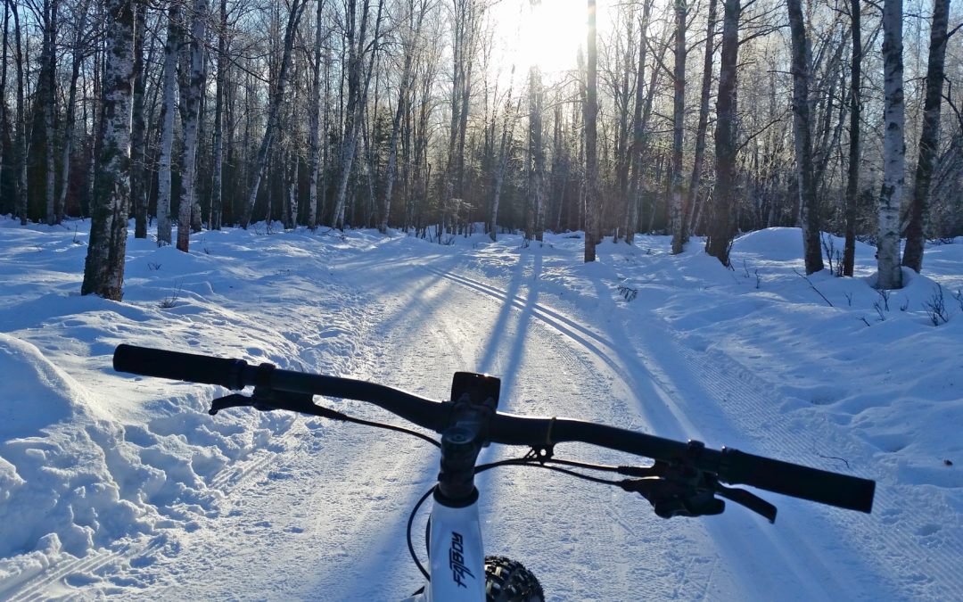 The winter buying guide for fat tire bikers
