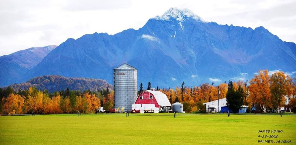Farming in Alaska: A Look At the Lush Mat-Su Valley