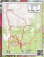 Government Peak Summer Trail