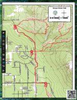 Morgan Horse Trail